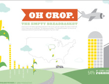 Iowa Crop Infographic